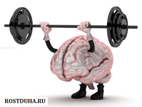 kak trenirovati mozg