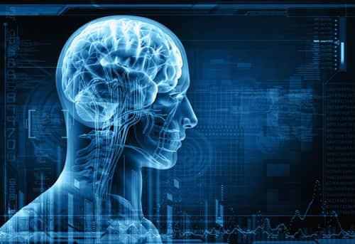 Причины уменьшения мозга