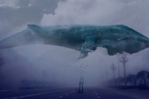 Синий кит – группа смерти